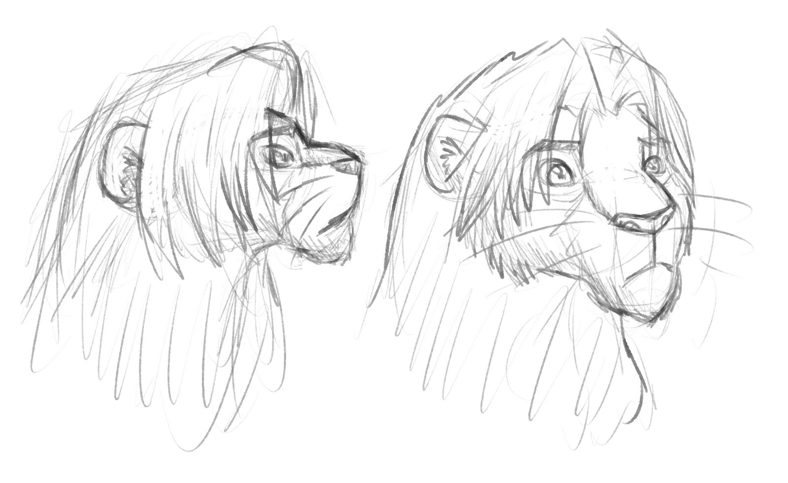 adult_simba_head_practice.png