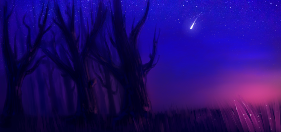 nightscape.png